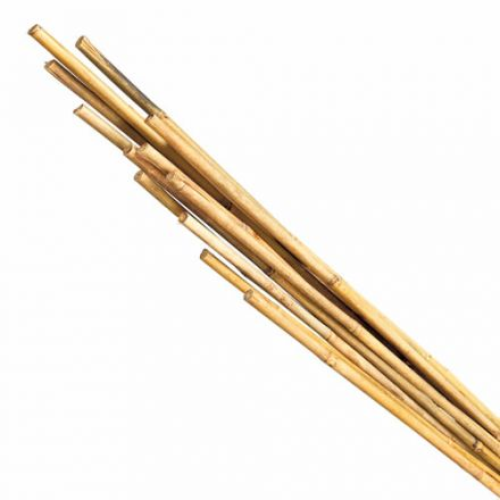 """Tiges en bambou 48"""" (15)"""